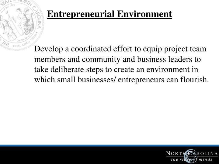Entrepreneurial Environment