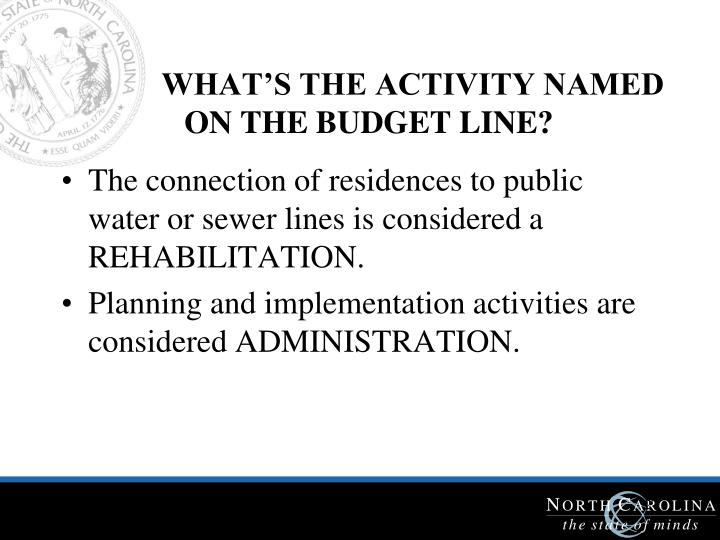WHAT'S THE ACTIVITY NAMED ON THE BUDGET LINE?