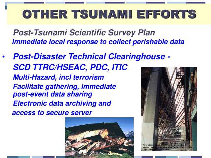 OTHER TSUNAMI EFFORTS