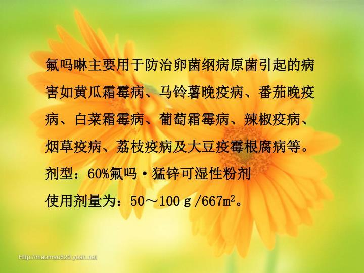 氟吗啉主要用于防治卵菌纲病原菌引起的病害如黄瓜霜霉病、马铃薯晚疫病、番茄晚疫病、白菜霜霉病、葡萄霜霉病、辣椒疫病、 烟草疫病、荔枝疫病及大豆疫霉根腐病等。  剂型: