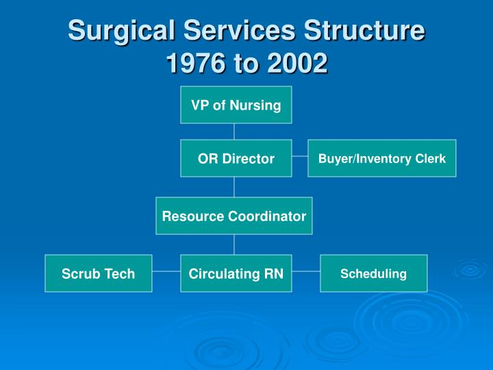Surgical Services Structure