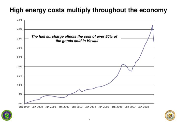 High energy costs multiply throughout the economy