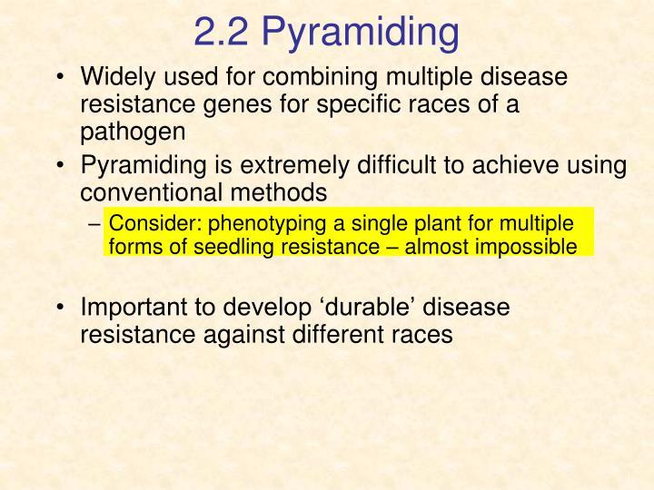 2.2 Pyramiding