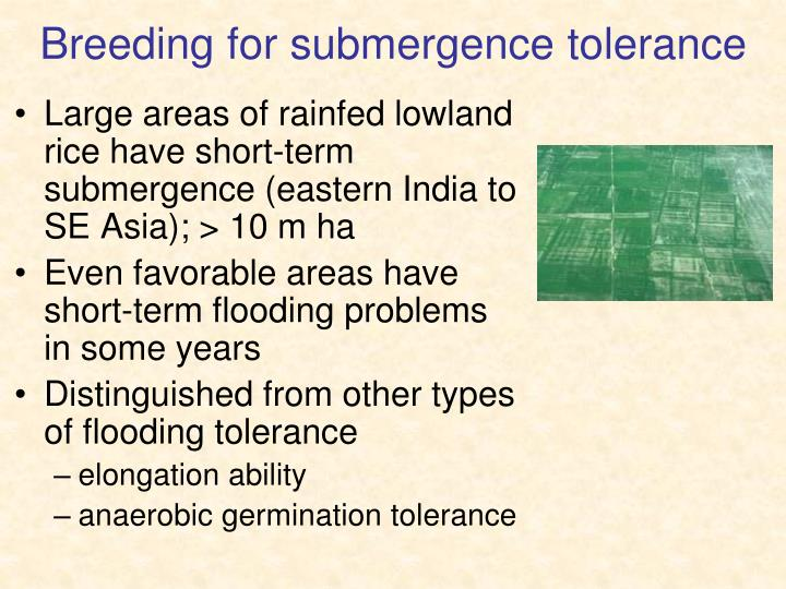 Breeding for submergence tolerance