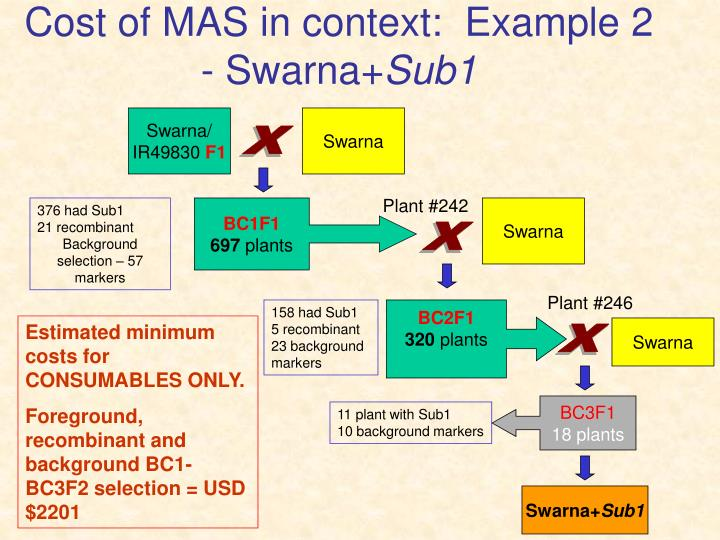 Cost of MAS in context:  Example 2 - Swarna+