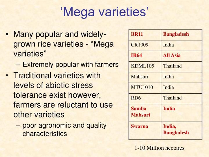 'Mega varieties'