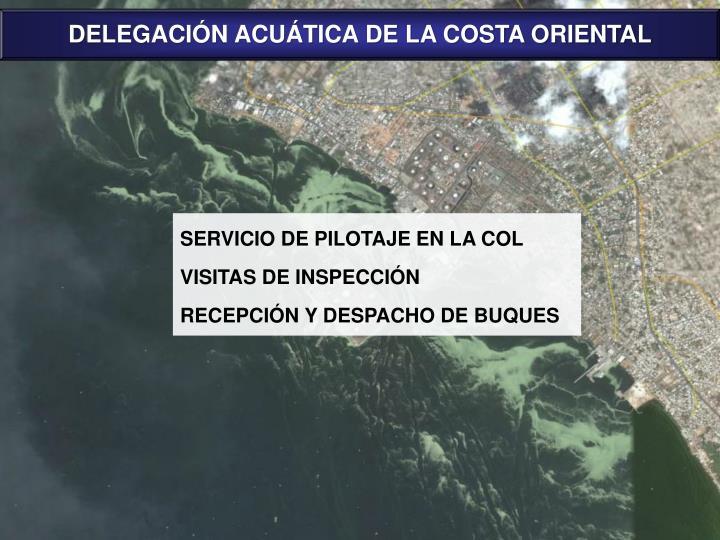 DELEGACIÓN ACUÁTICA DE LA COSTA ORIENTAL