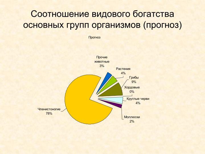 Соотношение видового богатства основных групп организмов (прогноз)