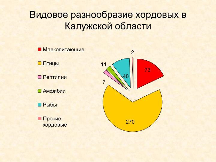 Видовое разнообразие хордовых в Калужской области