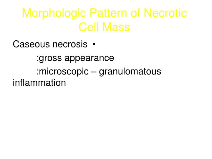 Morphologic Pattern of Necrotic Cell Mass