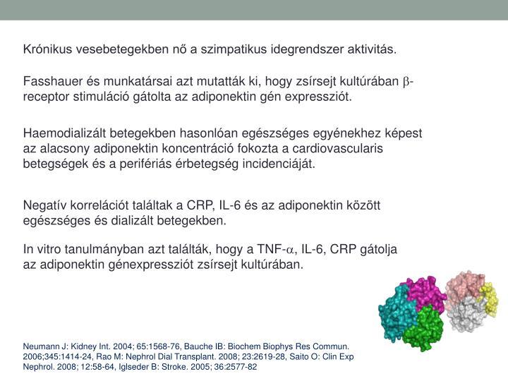 Krnikus vesebetegekben n a szimpatikus idegrendszer aktivits.