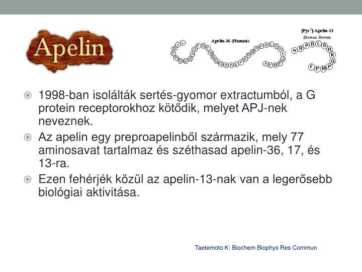 1998-ban isolltk serts-gyomor extractumbl, a G protein receptorokhoz ktdik, melyet APJ-nek neveznek.