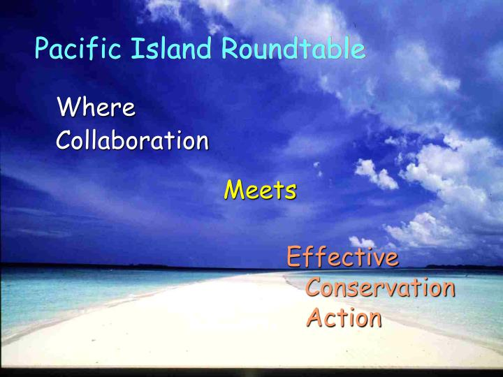 Pacific Island Roundtable