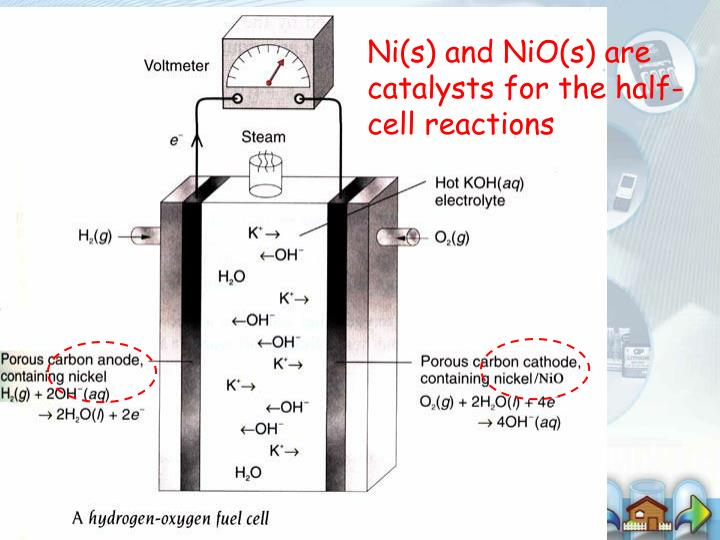 Ni(s) and NiO(s) are catalysts for the half-cell reactions
