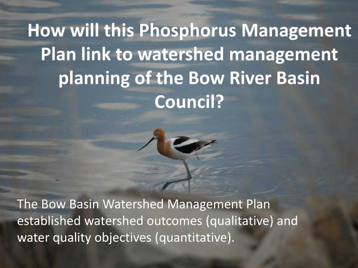 How will this Phosphorus Management Plan link to watershed management planning of the Bow River Basin Council?