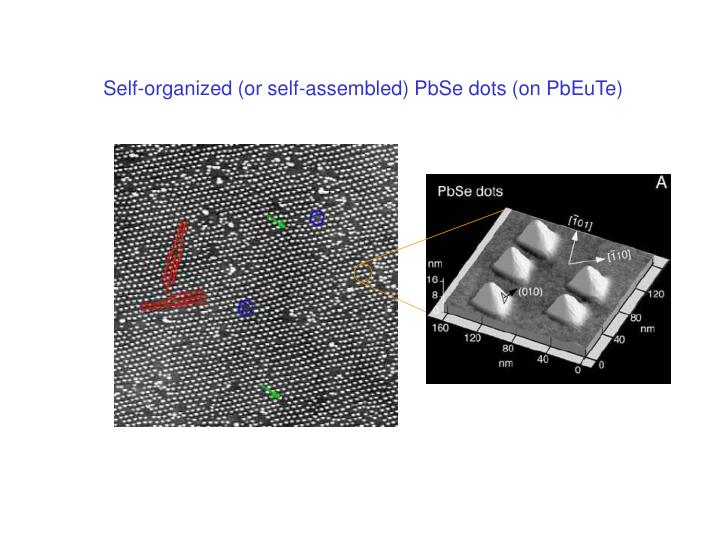 Self-organized (or self-assembled) PbSe dots (on PbEuTe)