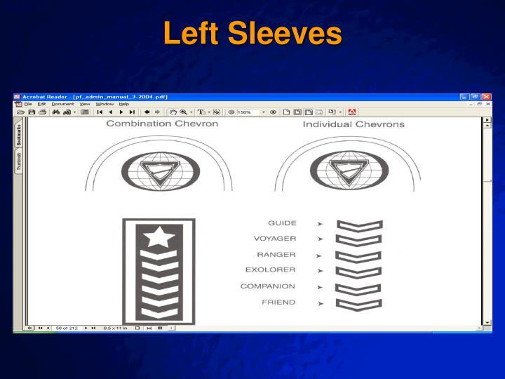 Left Sleeves