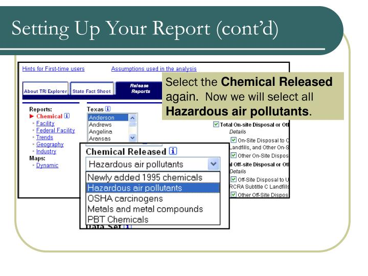 Setting Up Your Report (cont'd)