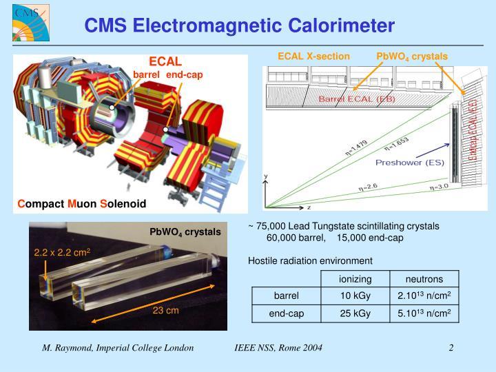 CMS Electromagnetic Calorimeter