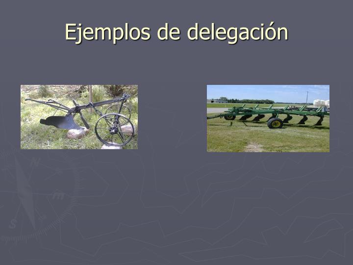 Ejemplos de delegación