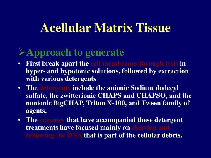 Acellular Matrix Tissue