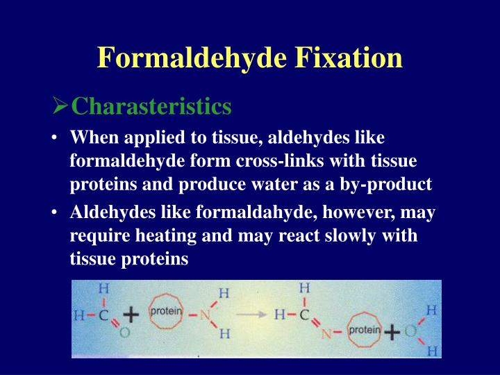 Formaldehyde Fixation