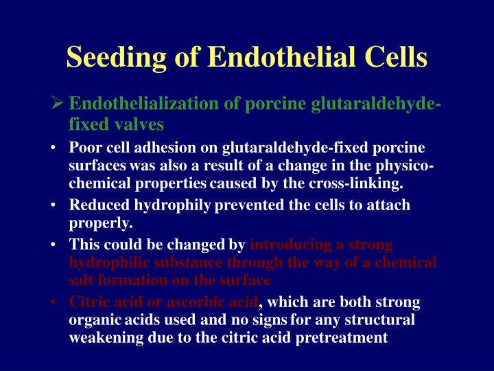 Seeding of Endothelial Cells