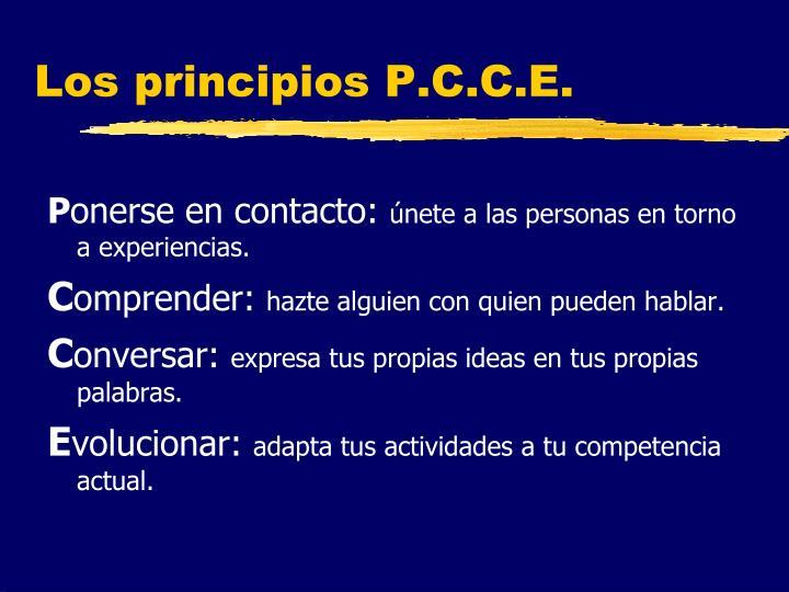 Los principios P.C.C.E.