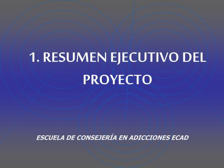 1. RESUMEN EJECUTIVO DEL PROYECTO