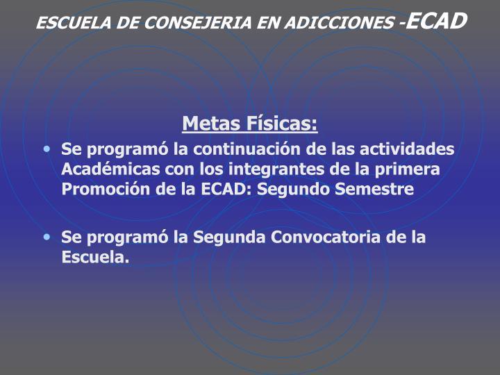 ESCUELA DE CONSEJERIA EN ADICCIONES -