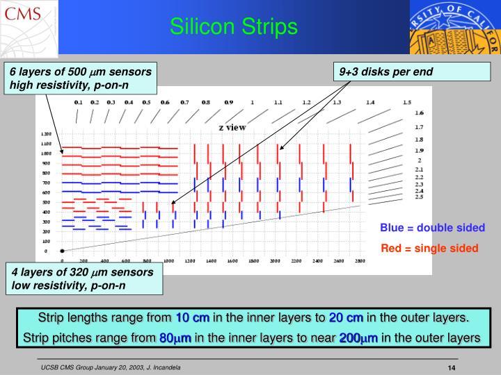 Silicon Strips