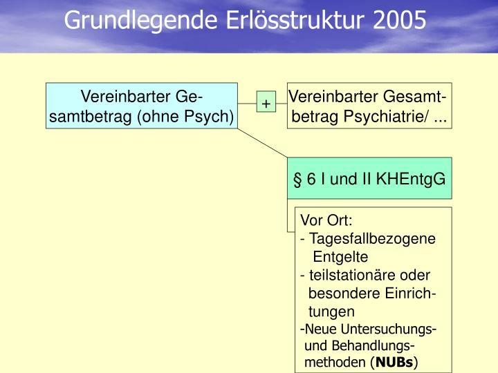 Grundlegende Erlösstruktur 2005