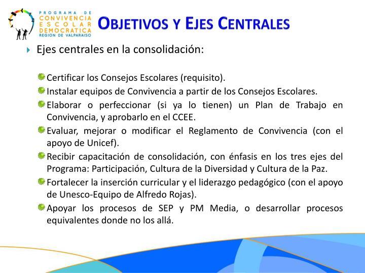 Objetivos y Ejes Centrales