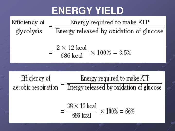 ENERGY YIELD