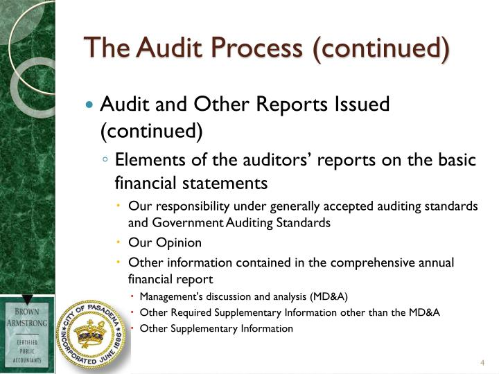The Audit Process (continued)