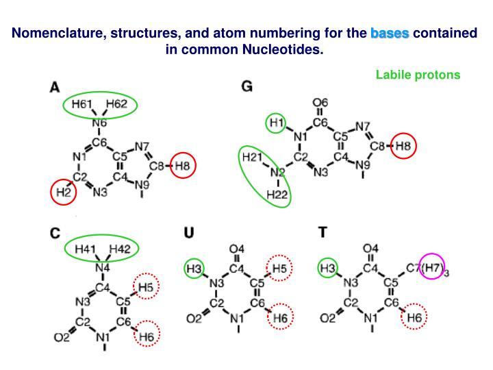Labile protons