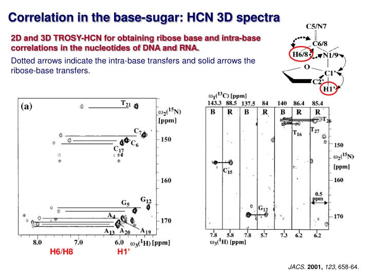 Correlation in the base-sugar: HCN 3D spectra