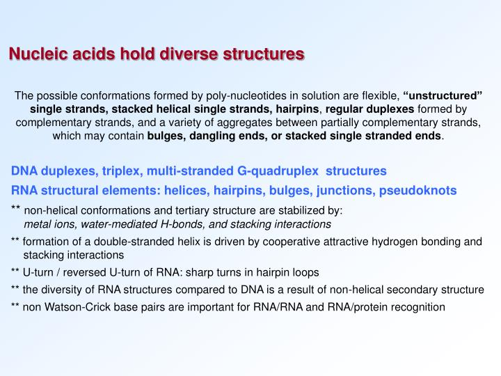 Nucleic acids hold diverse structures