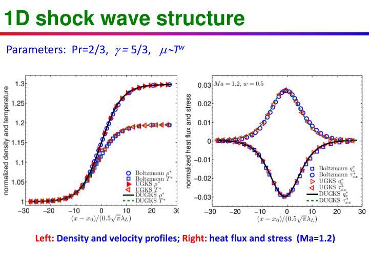 1D shock wave structure