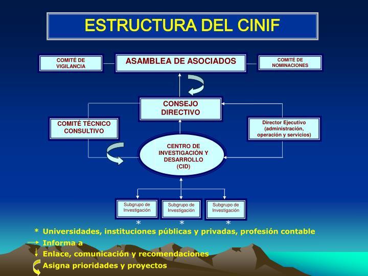 ESTRUCTURA DEL CINIF