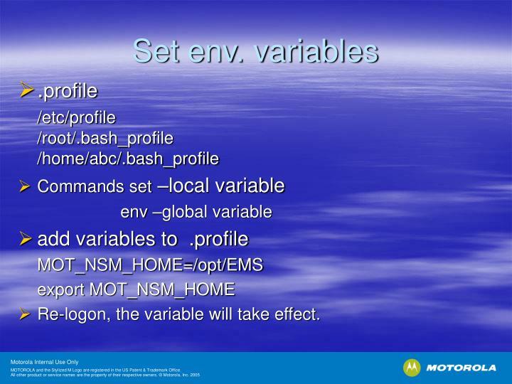 Set env. variables