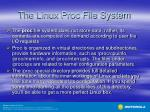 the linux proc file system