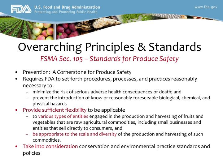 Overarching Principles & Standards