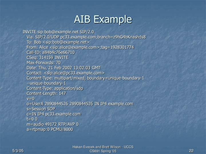 AIB Example