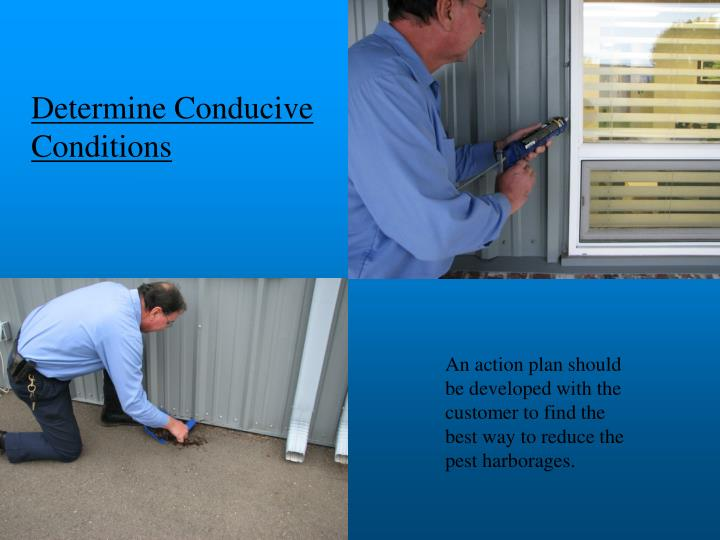 Determine Conducive       Conditions