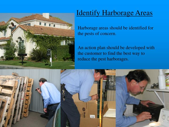Identify Harborage Areas