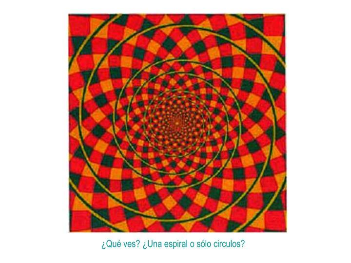 ¿Qué ves? ¿Una espiral o sólo circulos?
