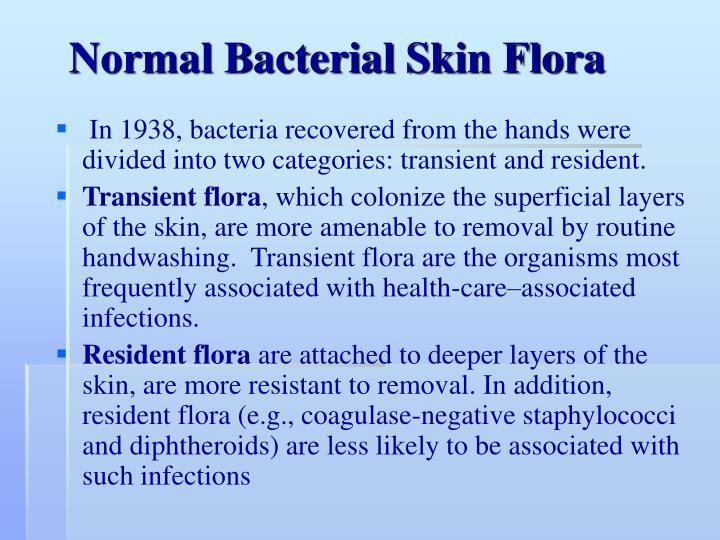 Normal Bacterial Skin Flora