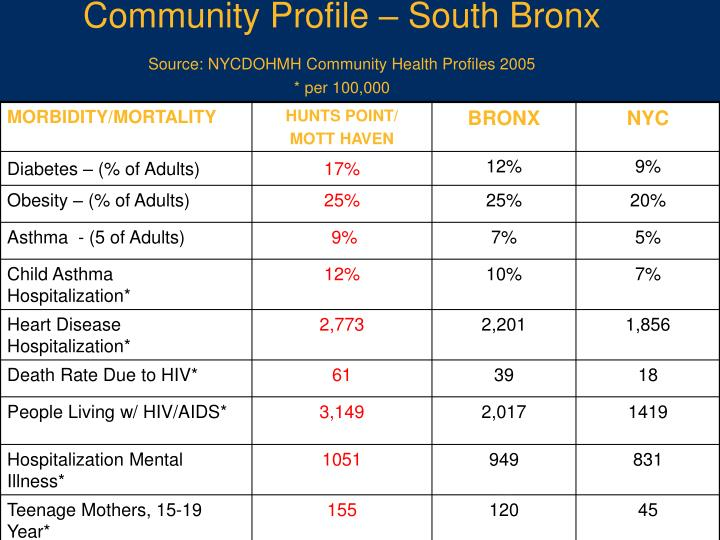 Community Profile – South Bronx