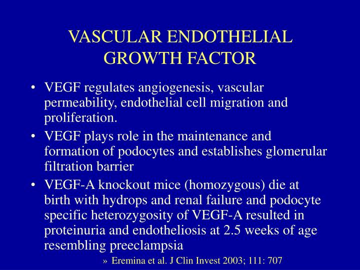 VASCULAR ENDOTHELIAL GROWTH FACTOR